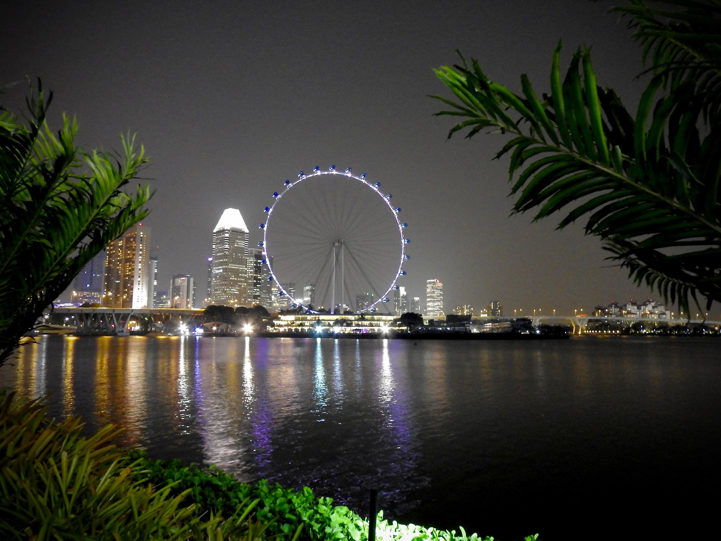 Singapore Flyer seen from the Gardens by the Bay. Photo: (C) Remko Tanis