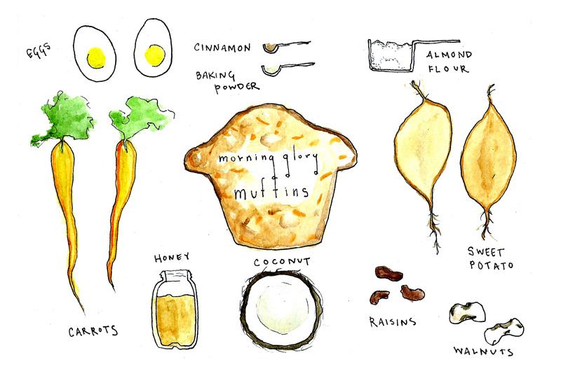 morning glory muffins_sketch.jpg