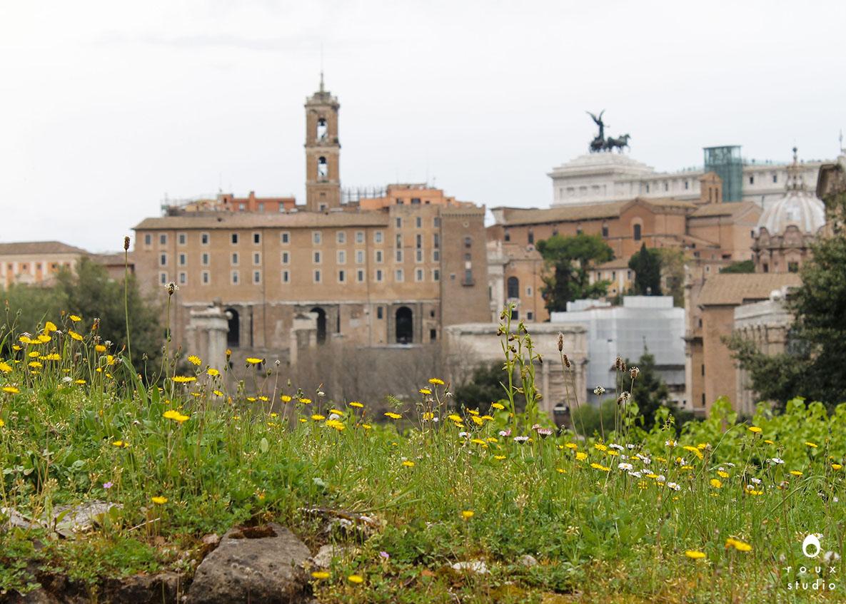 roman forum   rome, italy | april 2014