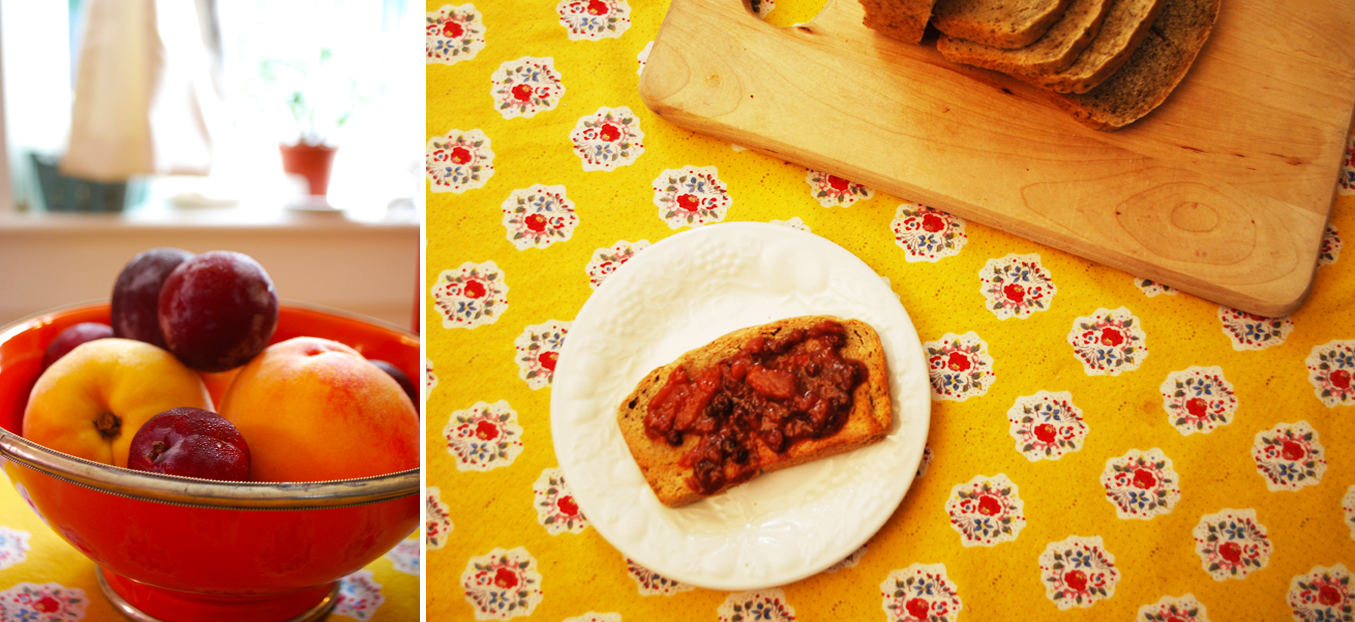 spiced drupe fruit chutney | roux studio