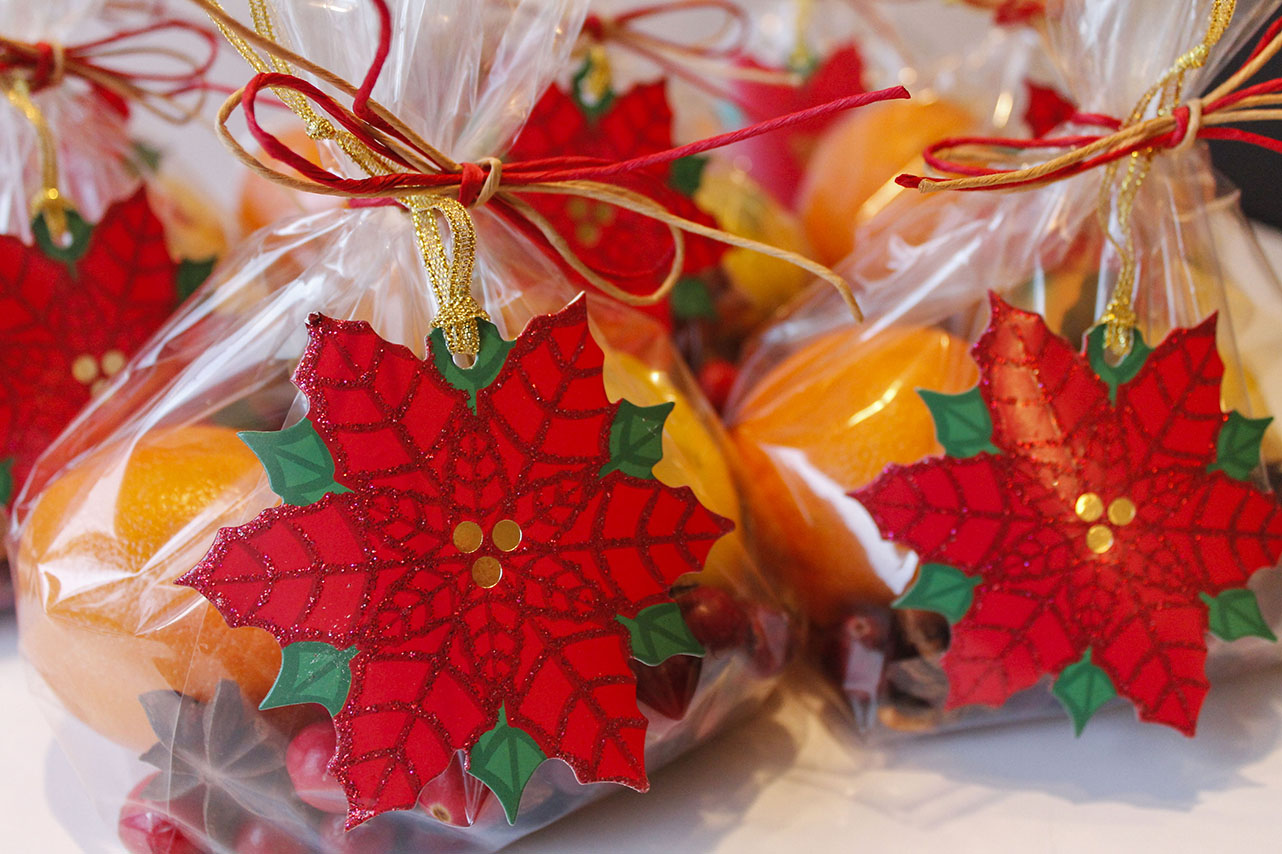 Holiday Simmering Pot Gift Bags | roux studio