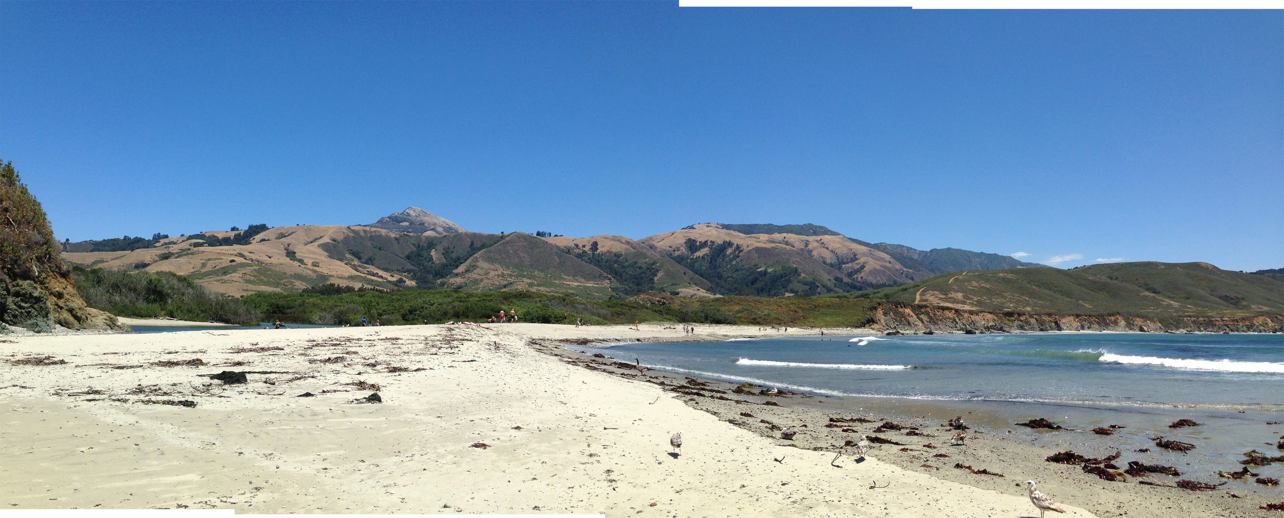 Where the ocean meets the river, Andrew Molera Beach