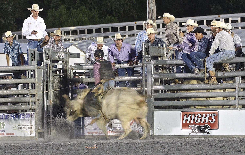 """Ride 'Em Cowboy!"""