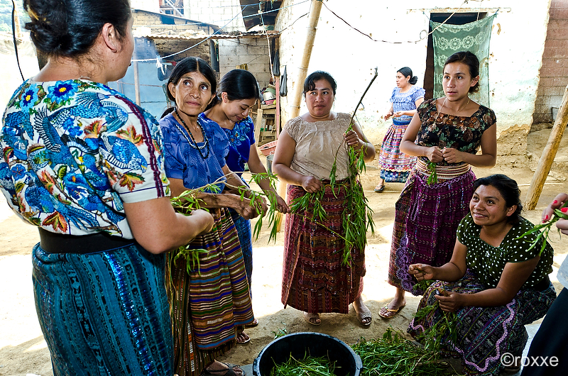 Guatemalan Artist journey — EL VOYAGE