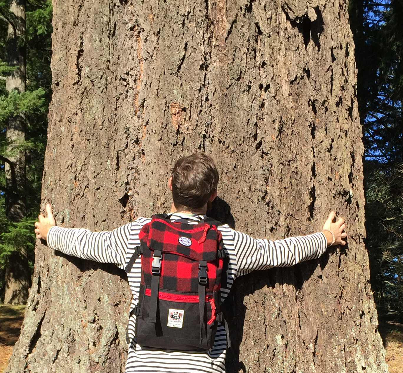 For the tree hugger!  Woolrich & Topo Designs  collaborative backpack. Made in the USA. Combining heritage lumberjacking with modern urban outdoorsyness!