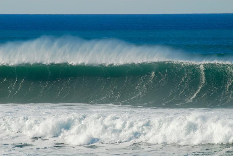 shorey.jpg
