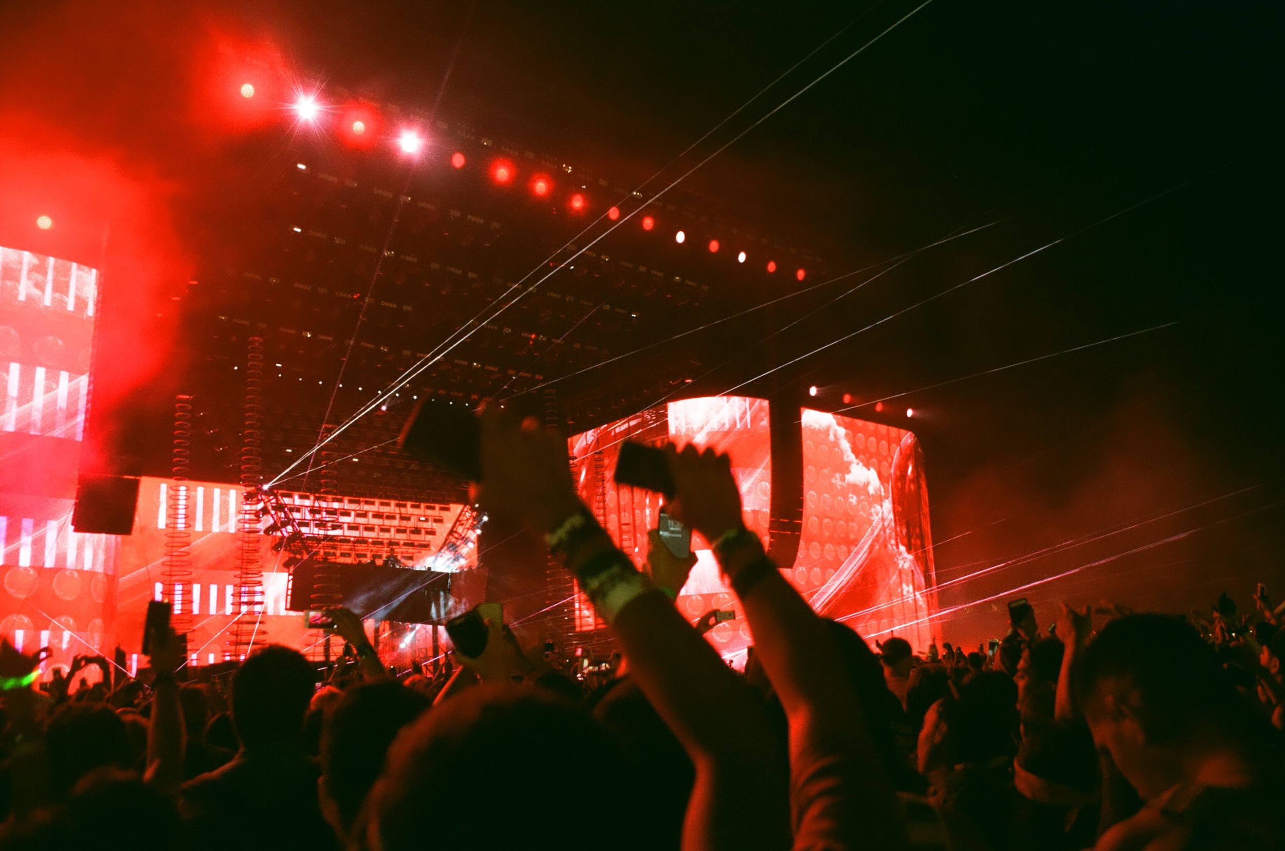 COACHELLA_STAYWILD00050.jpg