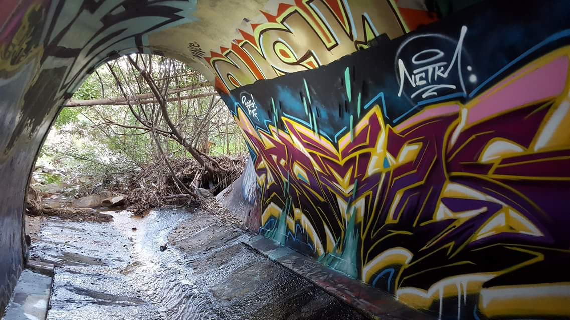 urban nature cave.jpg