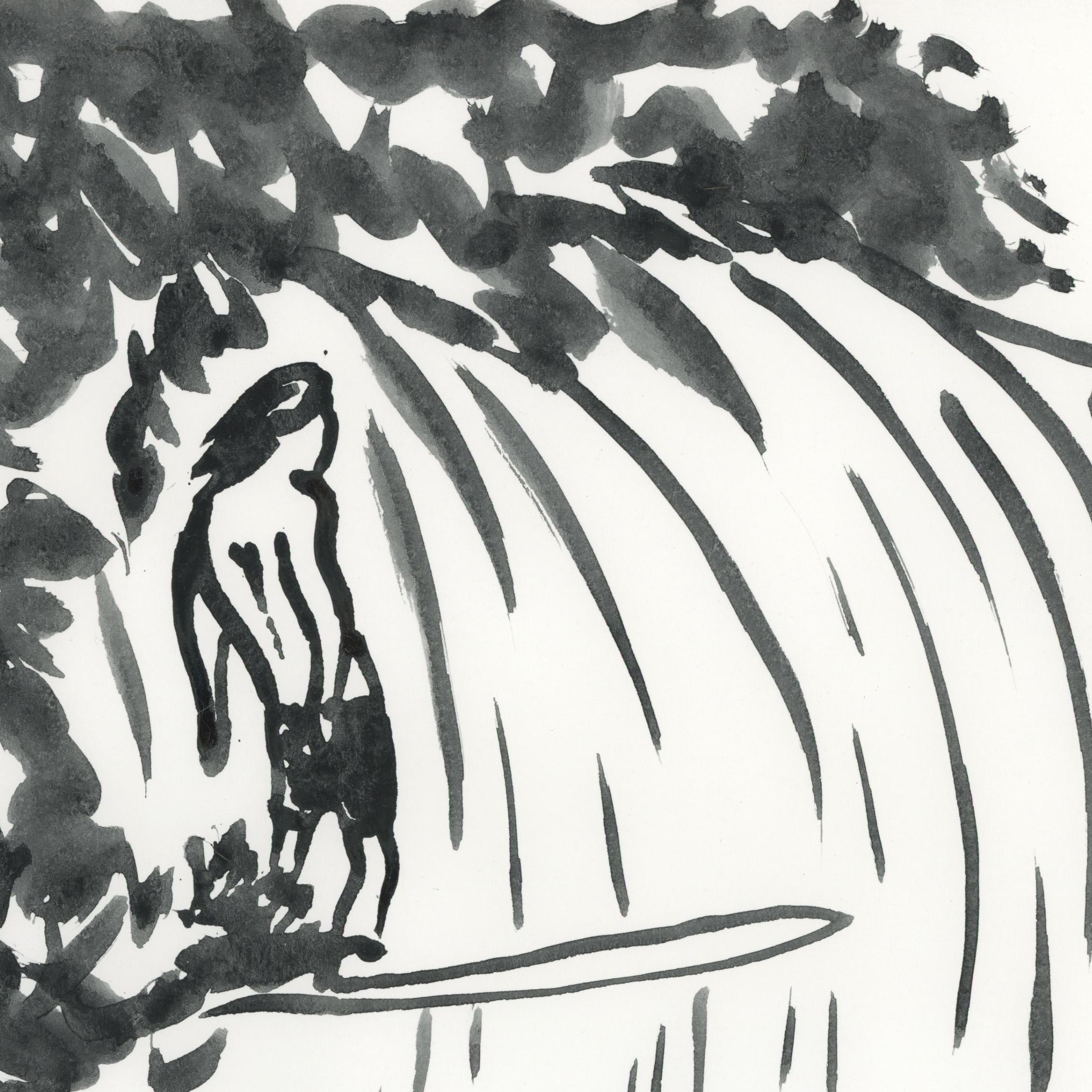 surf gram3.jpg