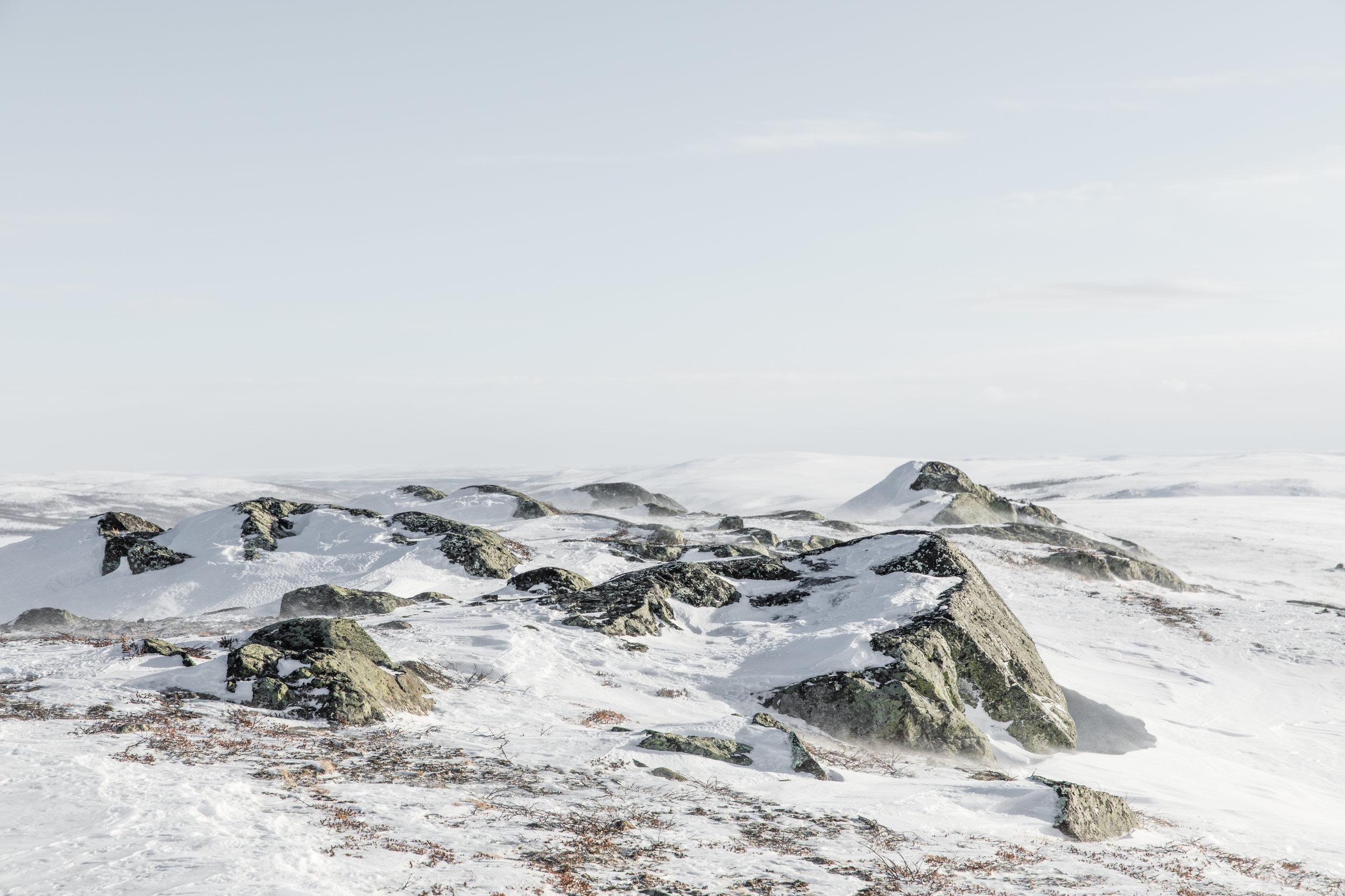 GRybus-StayWIld-NorwayClimate-1490.jpg