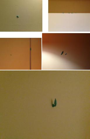 7:绿虫行为(我一直改变他们的位置) Green behavior (I change the position of these soft rubber all the time)
