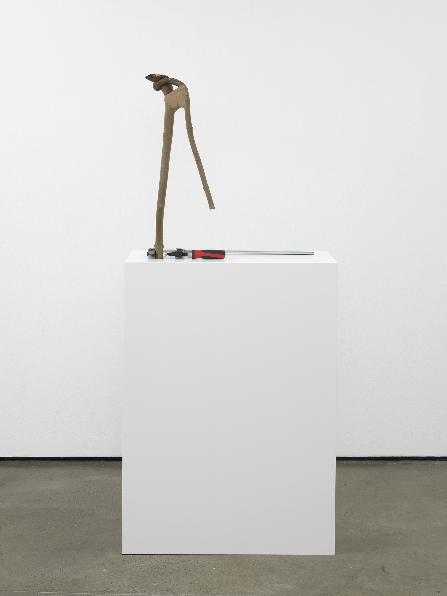 Twiggy 2012 Branch, tights, metal clamp, custom made plinth 68 x 62 x 38 cm / 26.7 x 24.4 x 14.9 in Plinth: 103 x 72 x 32 cm / 40.5 x 28.3 x 12.5 in