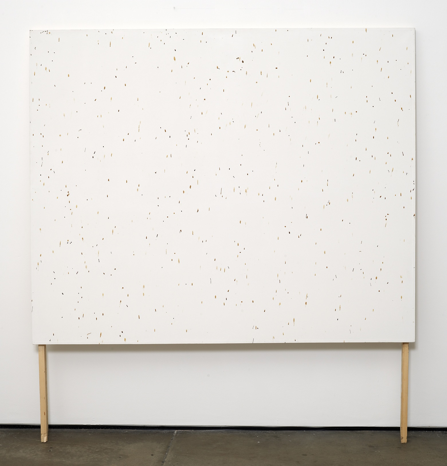 Bee Painting, Large Screen II   2009   Bee droppings on grounded canvas   148 x 120 cm