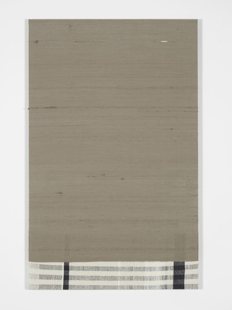 Service Entrance  2013  Monofilament, silk  121.9 x 76.2 cm / 48 x 30 in