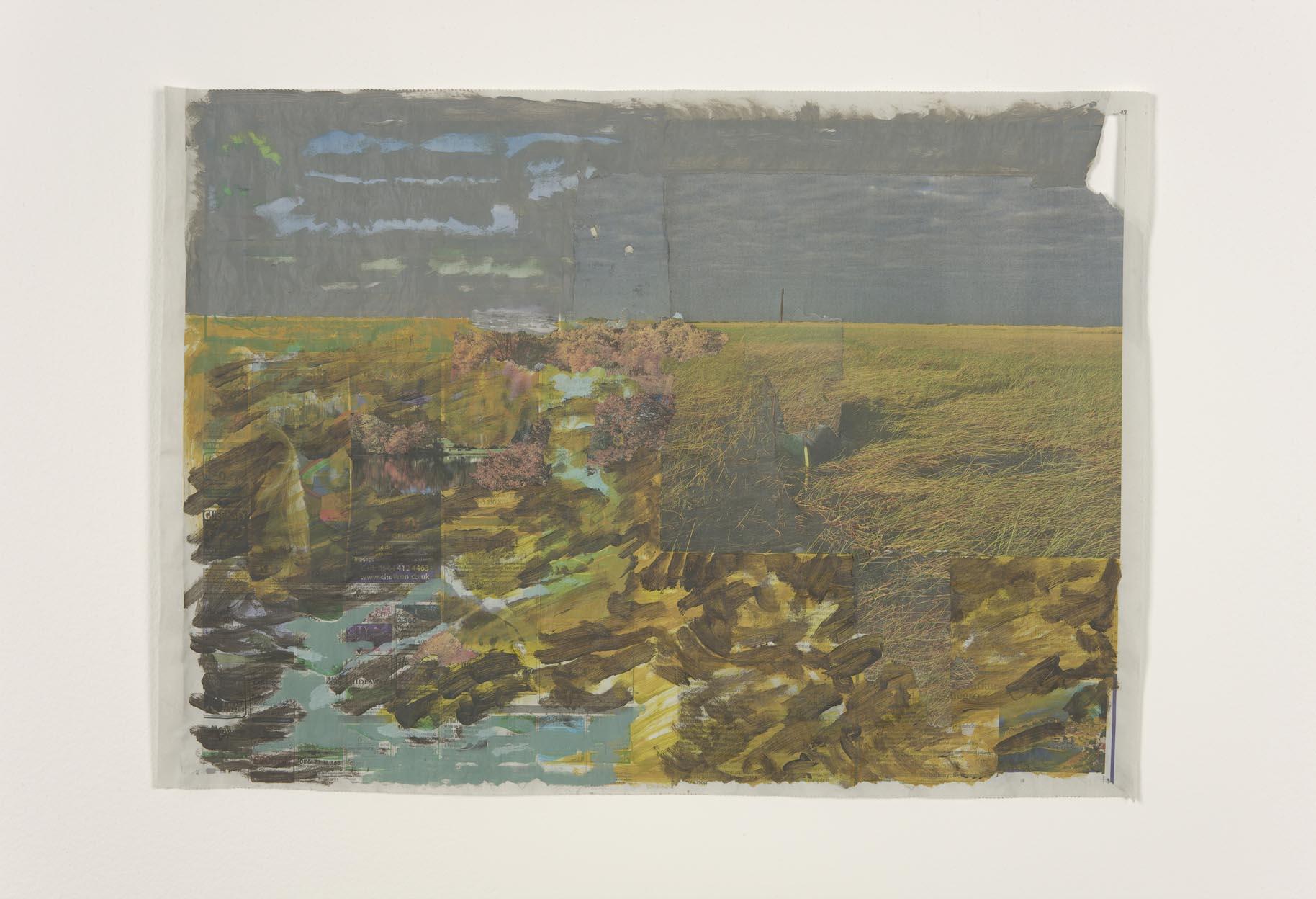Host Rain 2012 Acrylic on newsprint 45 x 63 cm / 17.7 x 24.8 in