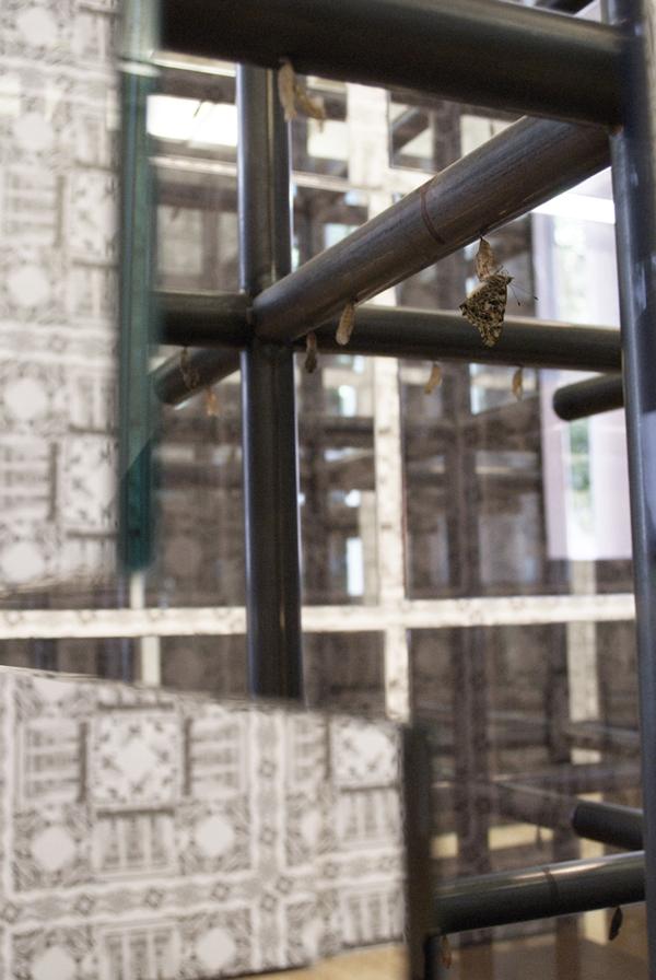 The Breeder 2007 Installation View