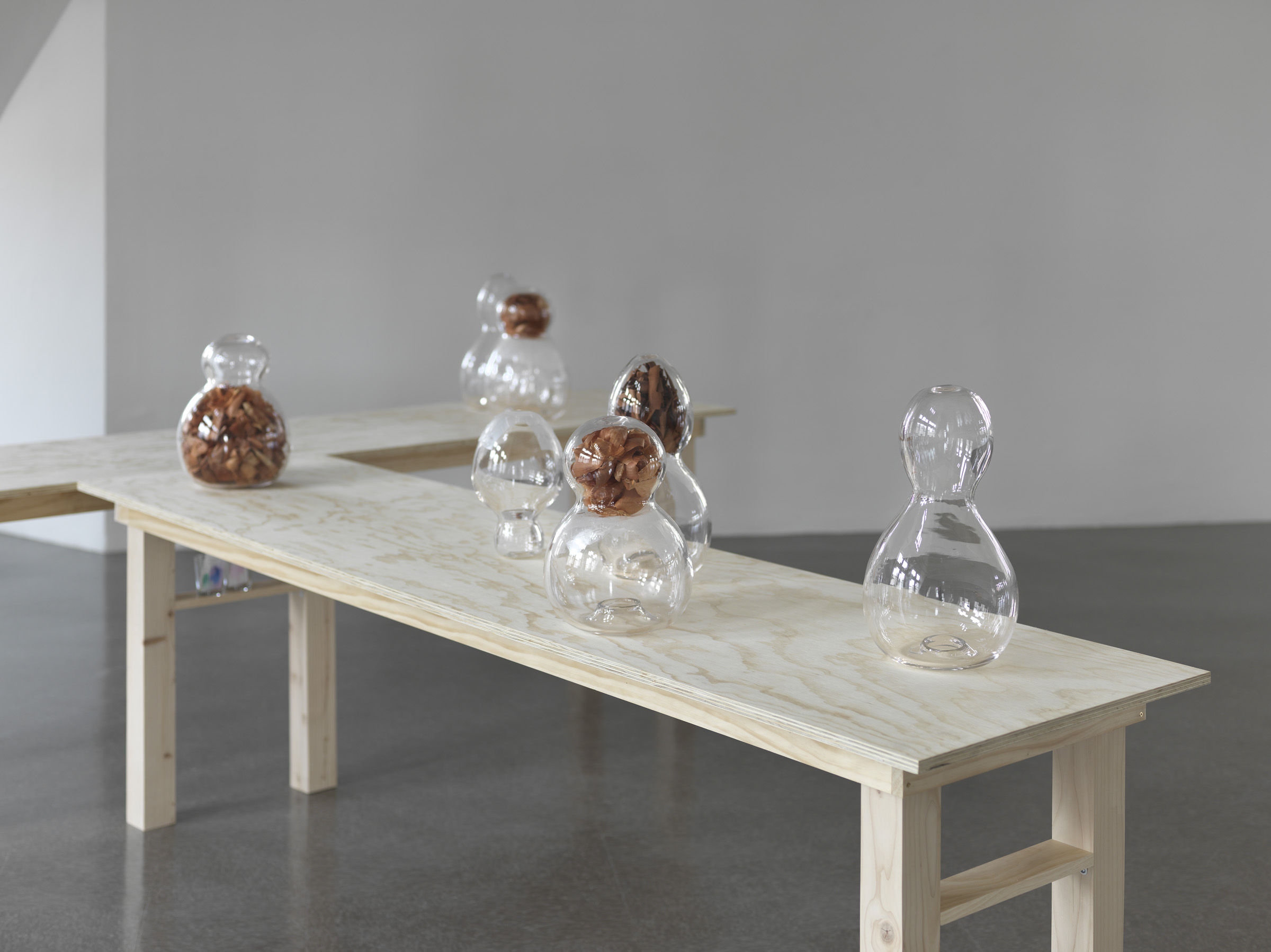 Ambic 2014 Glass, parafilm, onionskins, madrona bark, chromatography paper and samples. Tables and/or instructions for tables 120 x 244 x 244 cm / 47.2 x 96 x 96 in