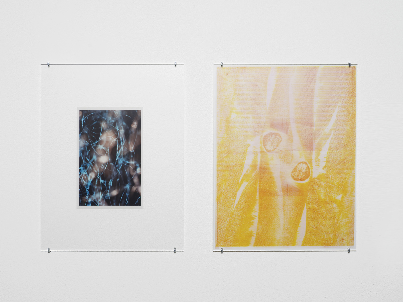 Untitled 2014-2015 Unique C-print, inkjet print, inkjet print on transparency, non-reflective perspex, L shaped pins  2 parts, each: 27.9 x 21.5 cm / 11 x 8.5 in