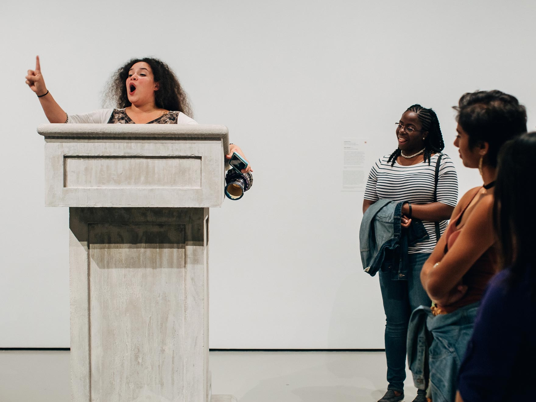 Political Intent  Installation View  Museum of Fine Arts, Boston, US  2016