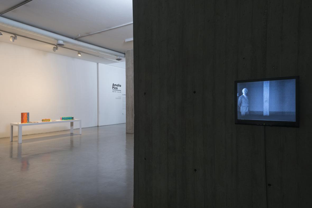 A un brazo de distancia  Installation View  NC-Arte, Bogotá, CO  2017