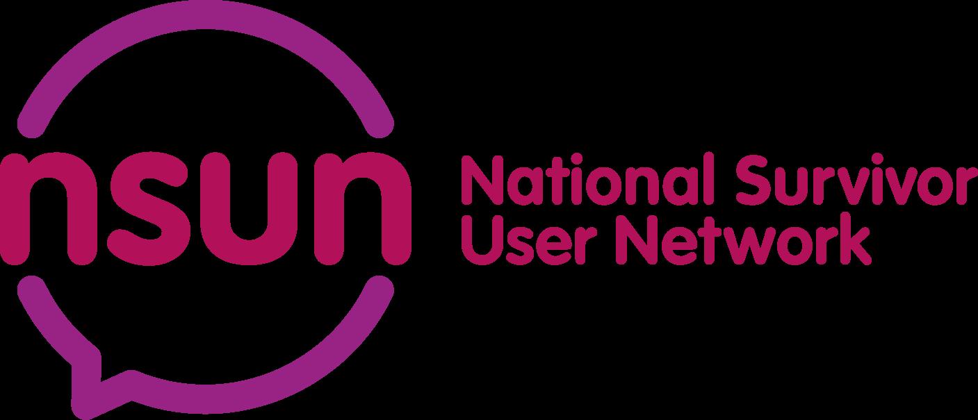 nsun logo.png