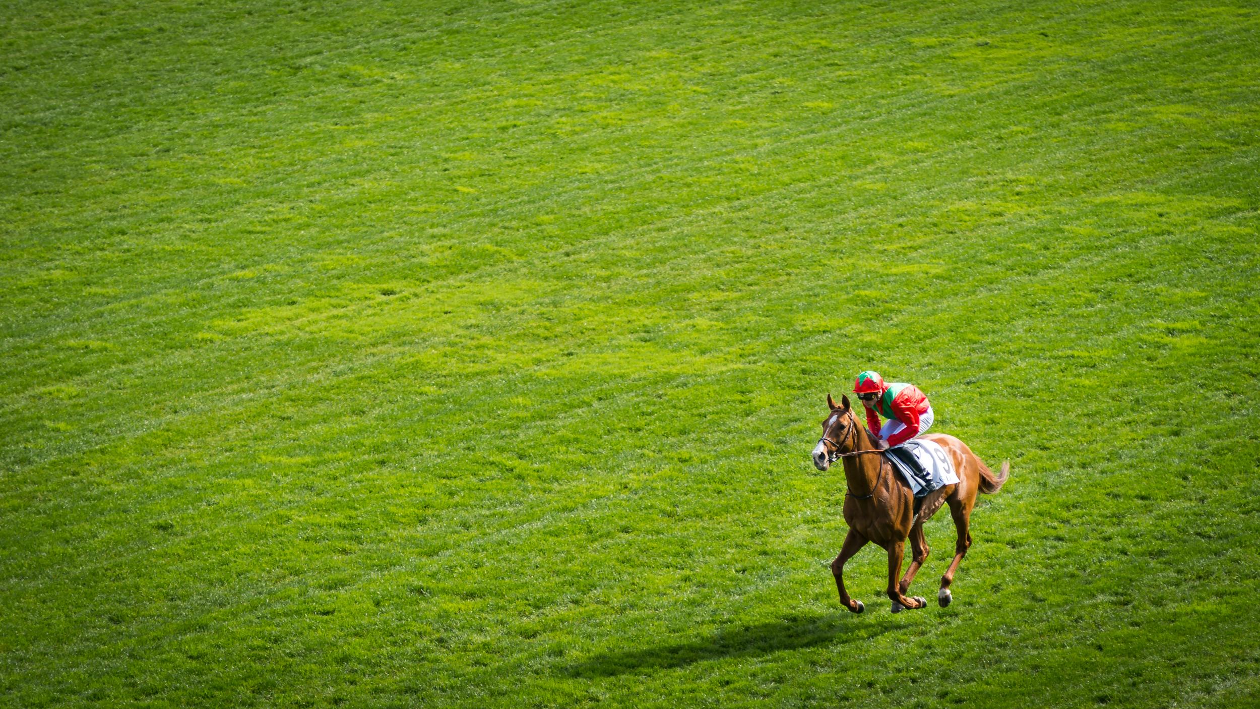 Longchamp 08-04-18 © Florian Léger - SHARE & DARE-05981.jpg