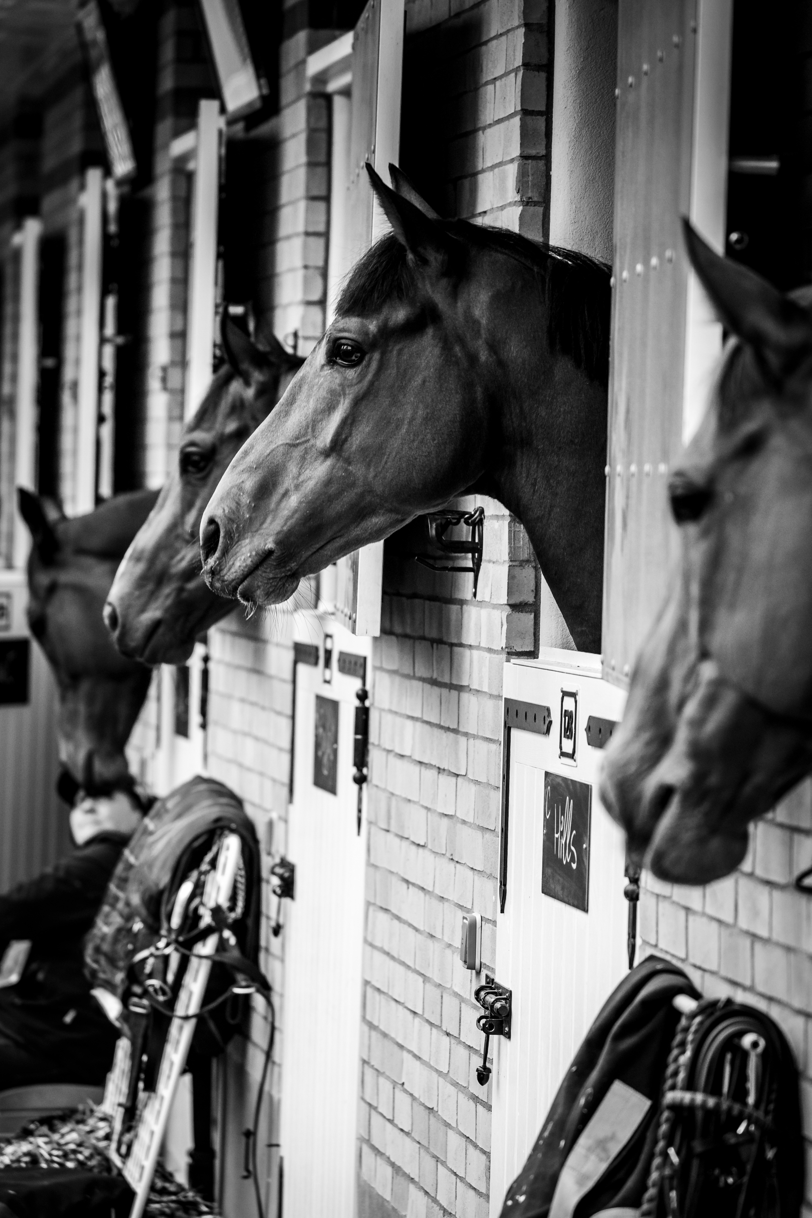 QPAT2018_Florian Leger - SHARE & DARE-28.jpg