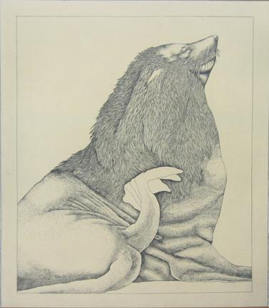 Untitled (sea lion)