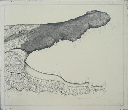 Untitled (crocodile)