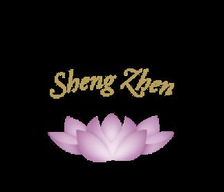 SZ Logo Larger .png file