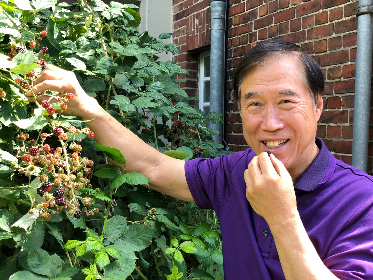 Master Li eating Berries.jpeg