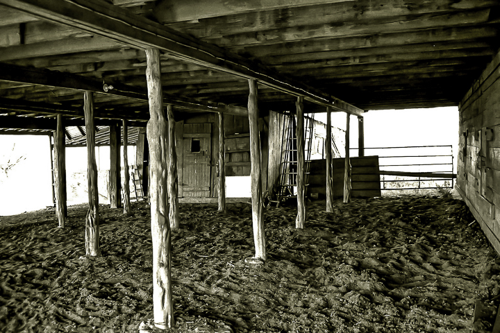 Prep School Ranchers-12.jpg