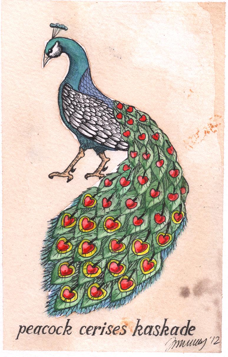 peacockcrop.jpg