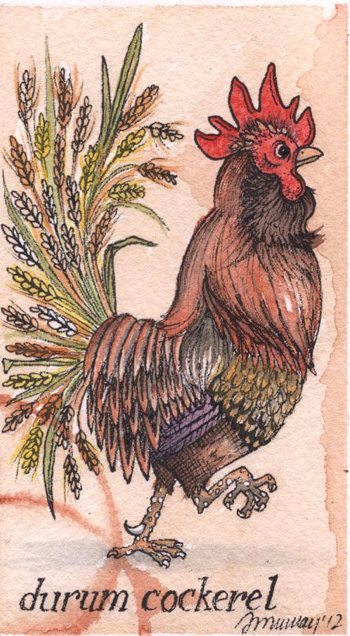roostercrop.jpg