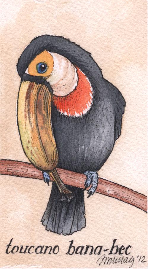 toucancrop.jpg