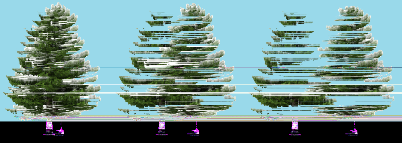 deForestation  -2014