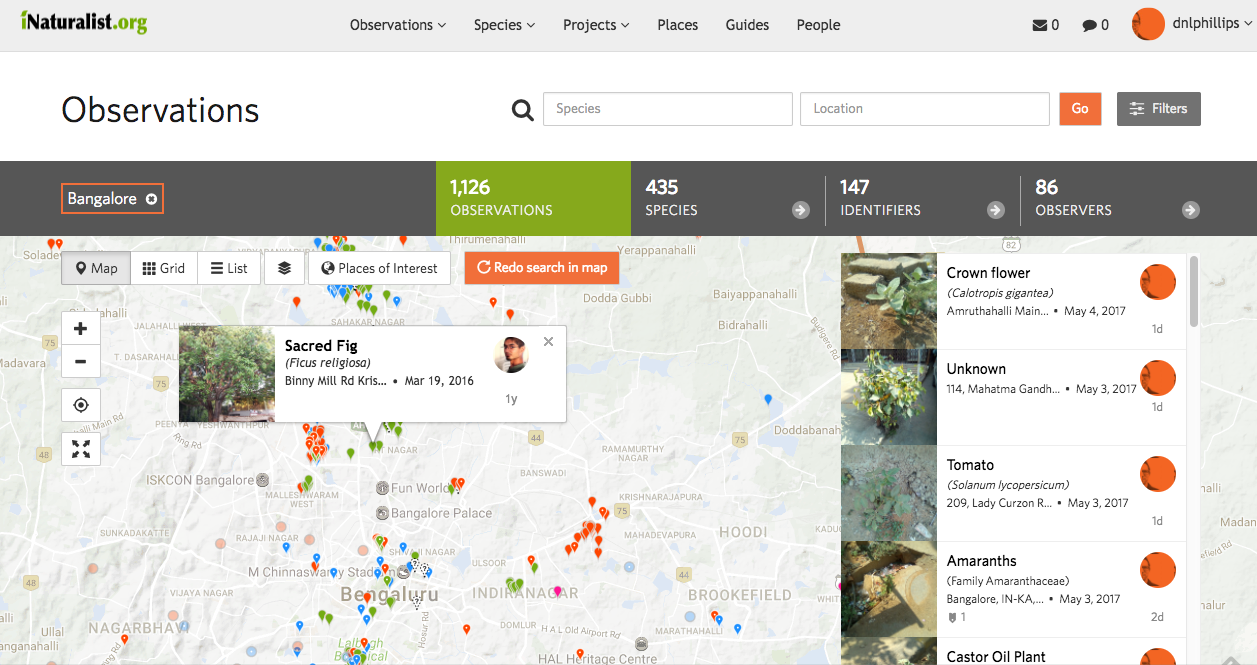 iNaturalist is a powerful tool for citizen science, allowing anyone to become an amateur field ecologist (screenshot)