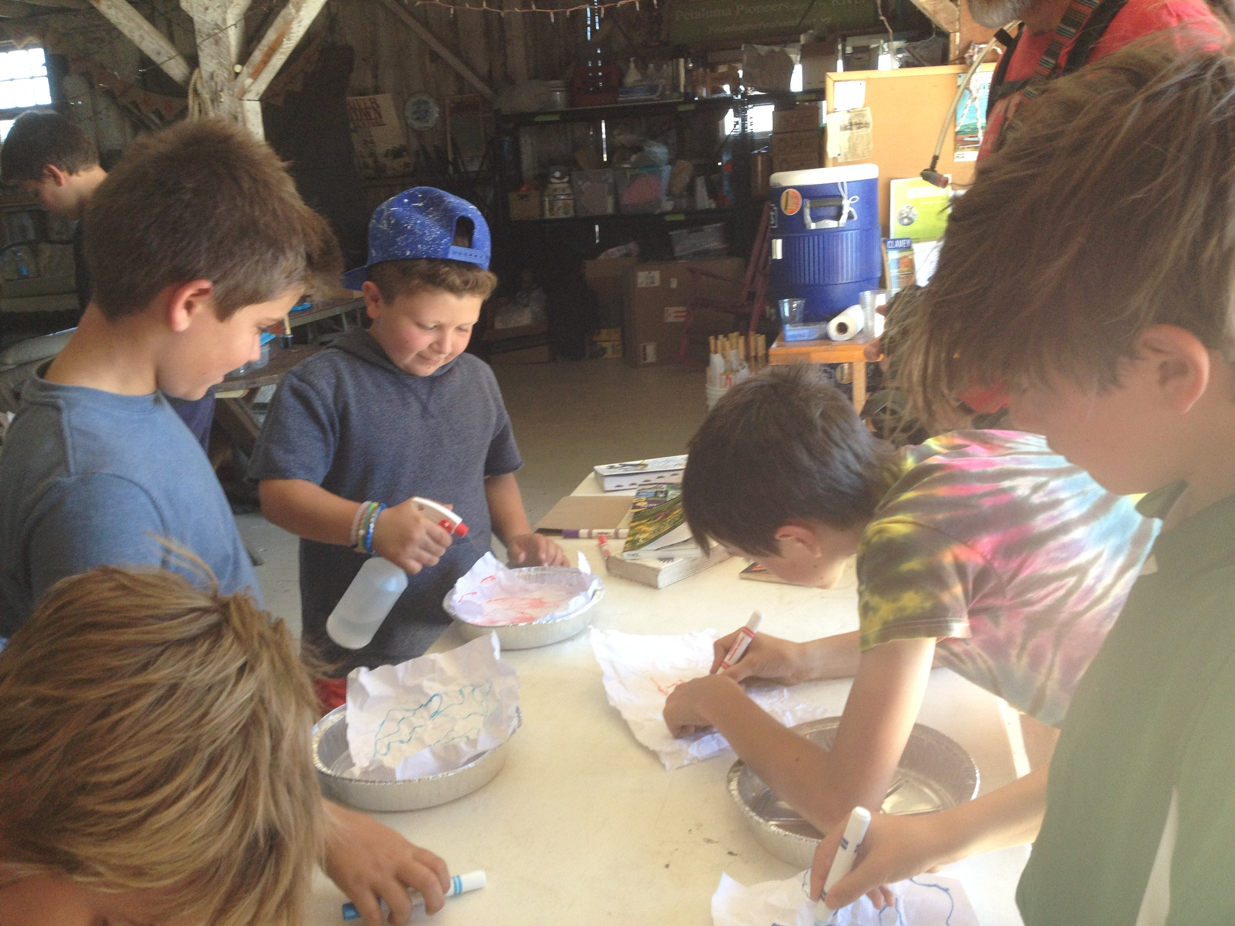 Students build their own watersheds and learn how pollution travels via storm water.