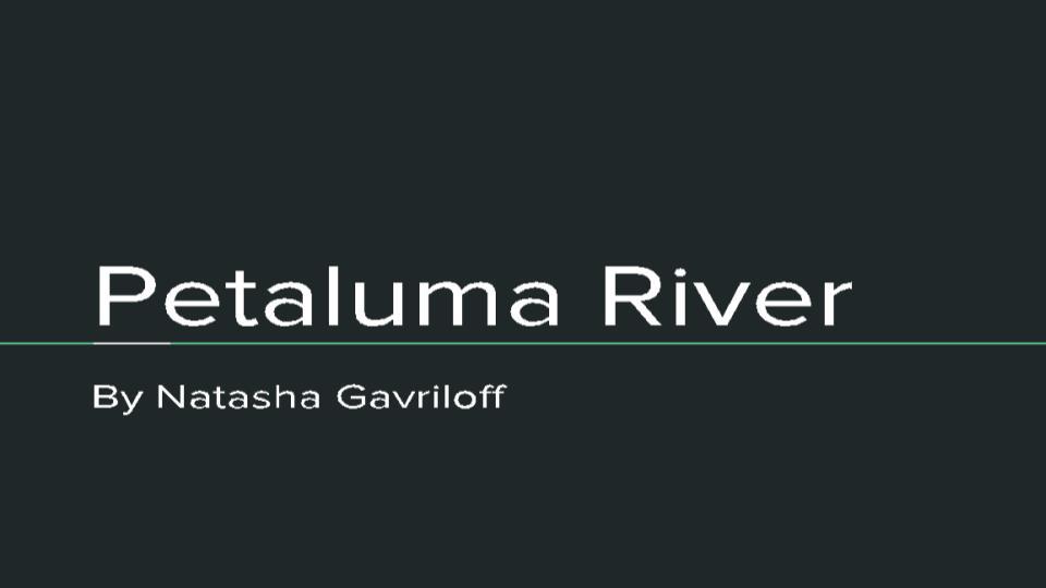 Natasha PowerPoint.pptx.jpg