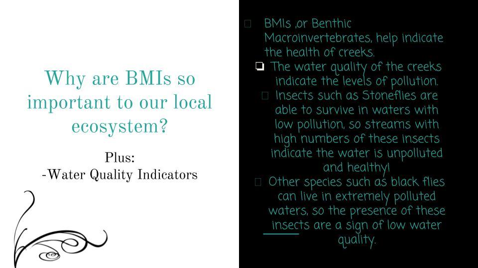 APES__BMI Presentation.pptx.jpg
