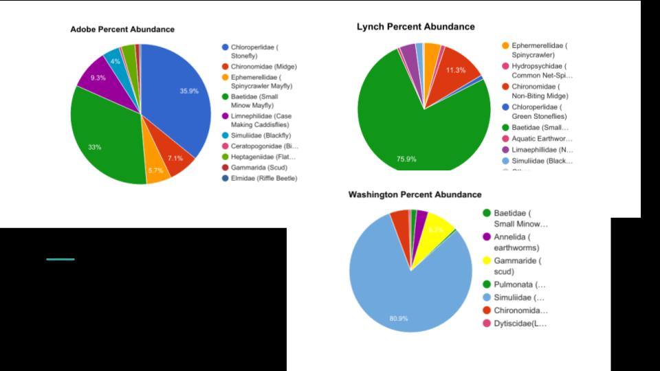 APES__BMI Presentation.pptx (6).jpg