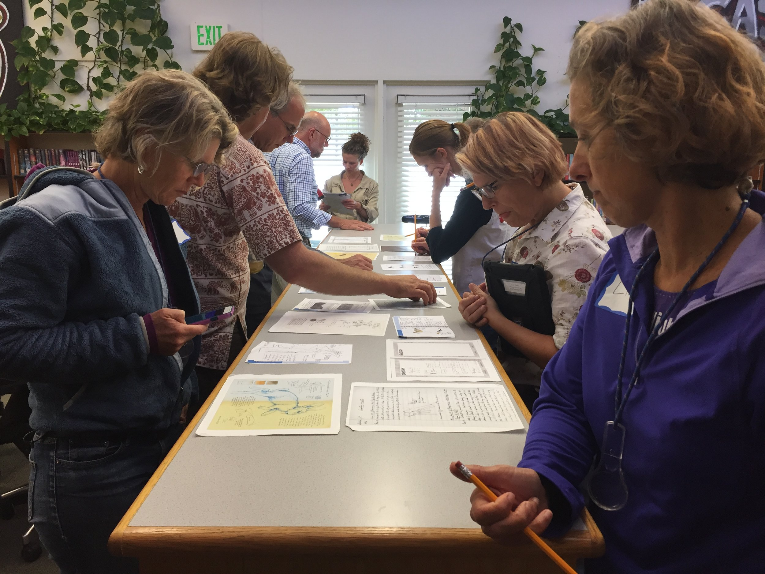 Educators look at various examples of field journals as part of the 2016 BEETLES training.