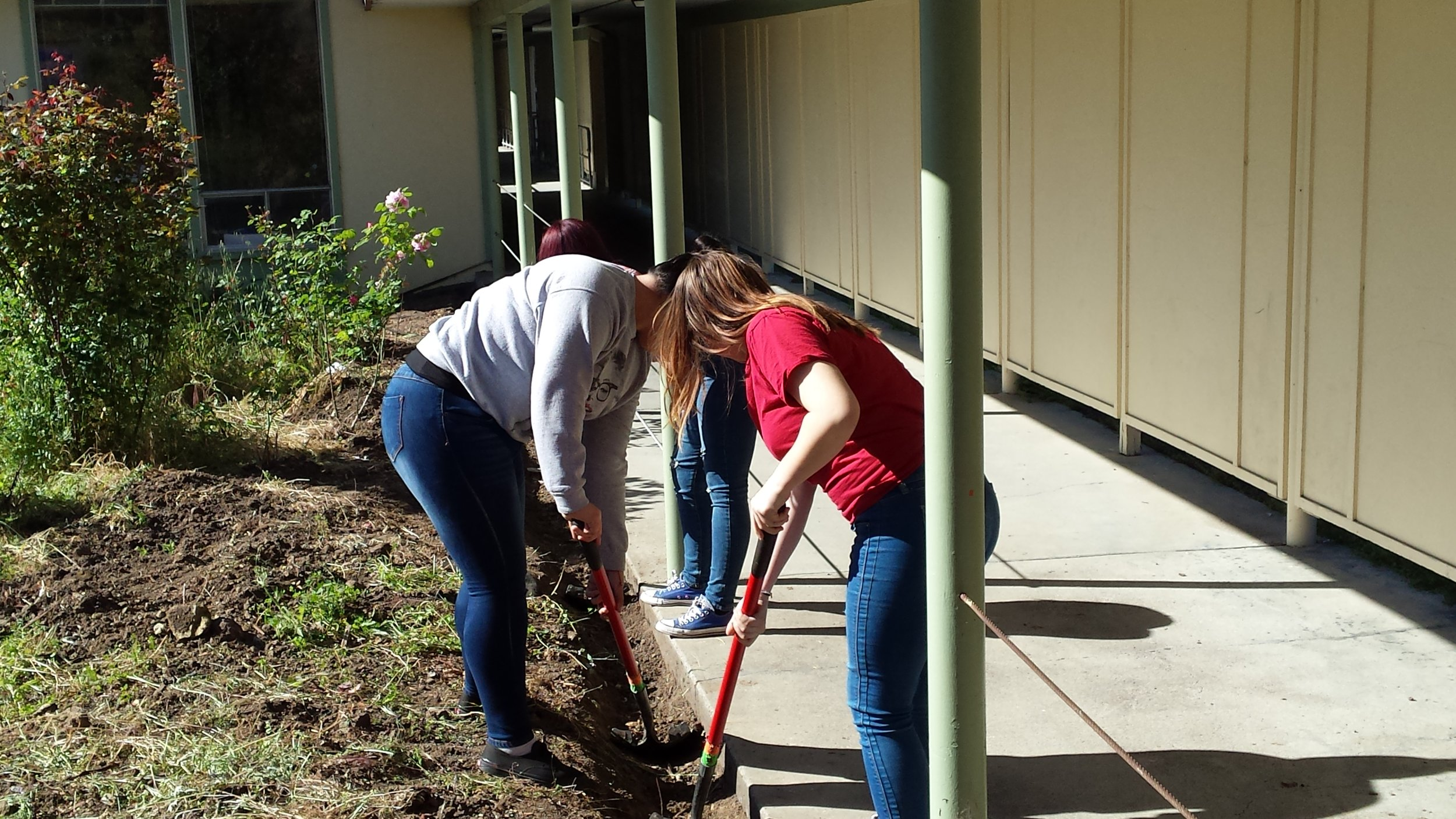 Students hard at work in the Crossroads Garden