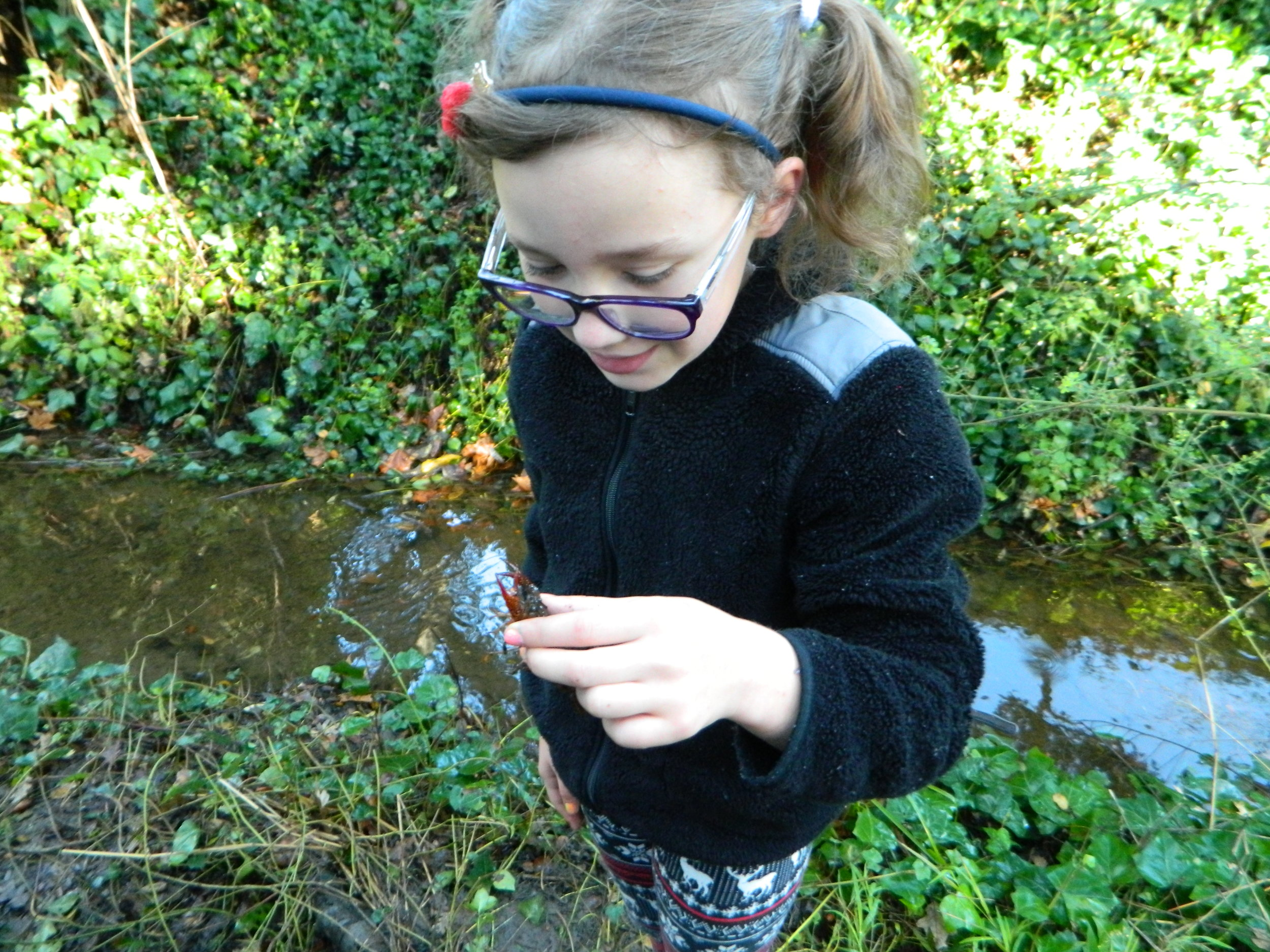 A student holds a cray fish up for classmates to see.