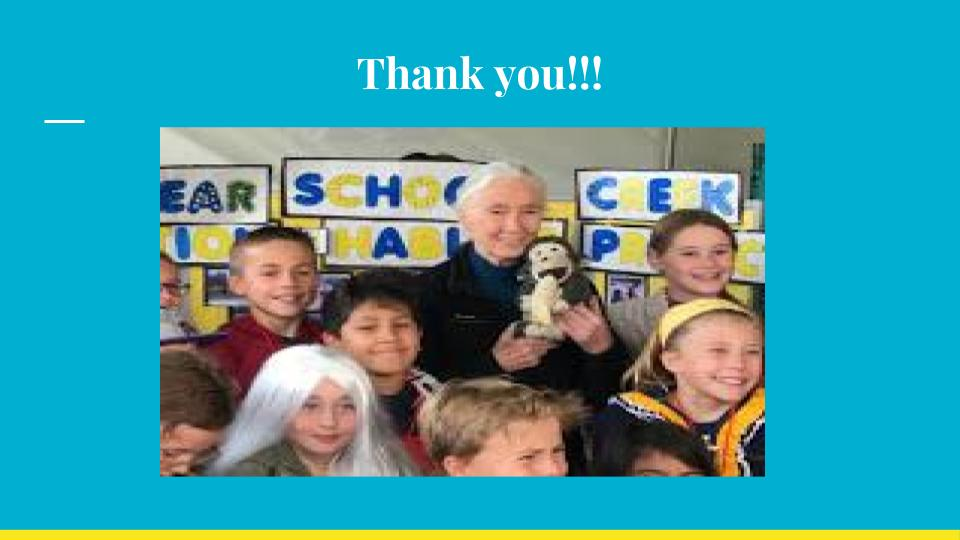 This concludes the McNear School Fourth Grade Creek and Bird Habitat Project presentation. Along with the Watershed Classroom, STRAW, NOAA, and Dr. Goodall, we appreciate the support, resources, and encouragement you have all given to help us be good stewards of our local watershed!