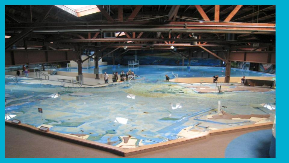 We took a field trip to the Bay Model in Sausalito to help us see a bigger picture of Bay Area Watersheds.