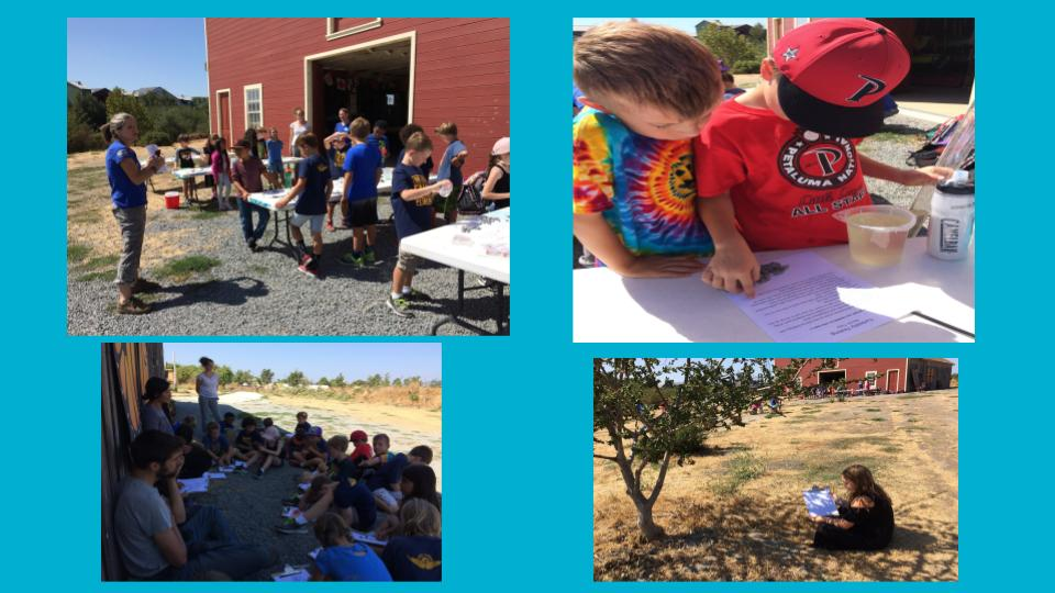 Early in the school year, we went to the David Yearsley Heritage Center, where instructors from the Watershed Classroom helped us learn about the Petaluma Watershed and how to do water quality tests.