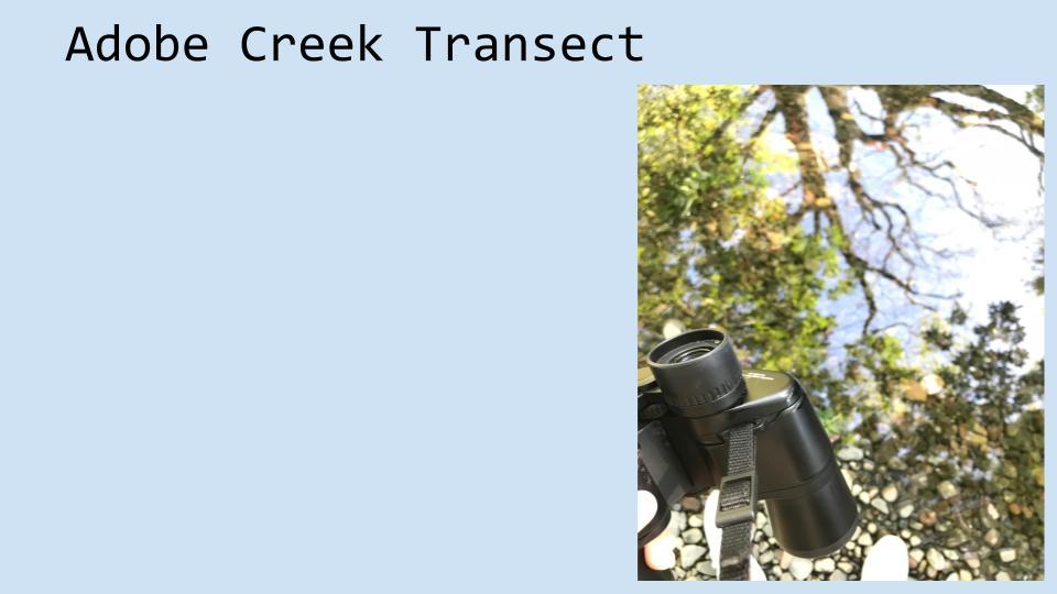 4 - CreekPresentation.2018.Final (17).jpg
