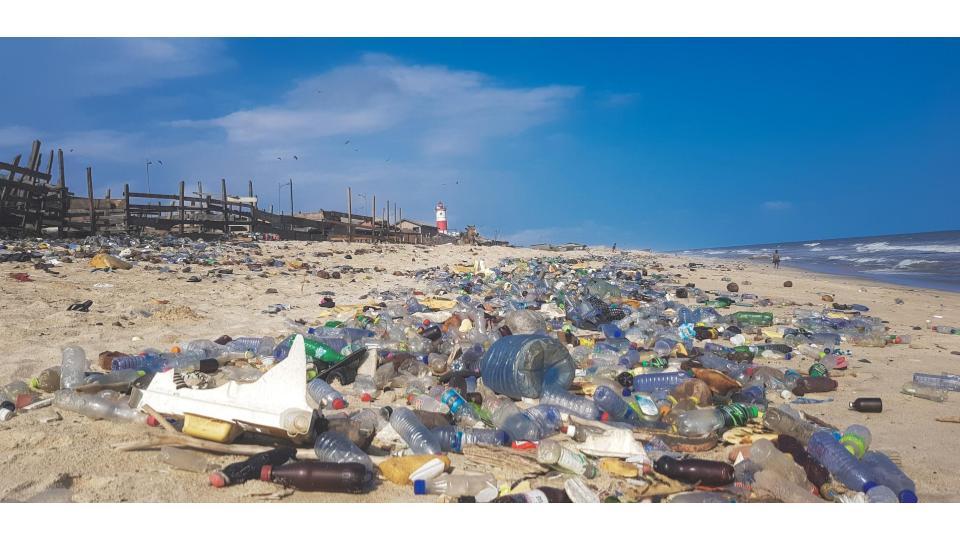 Trash in the Watershed (2).jpg