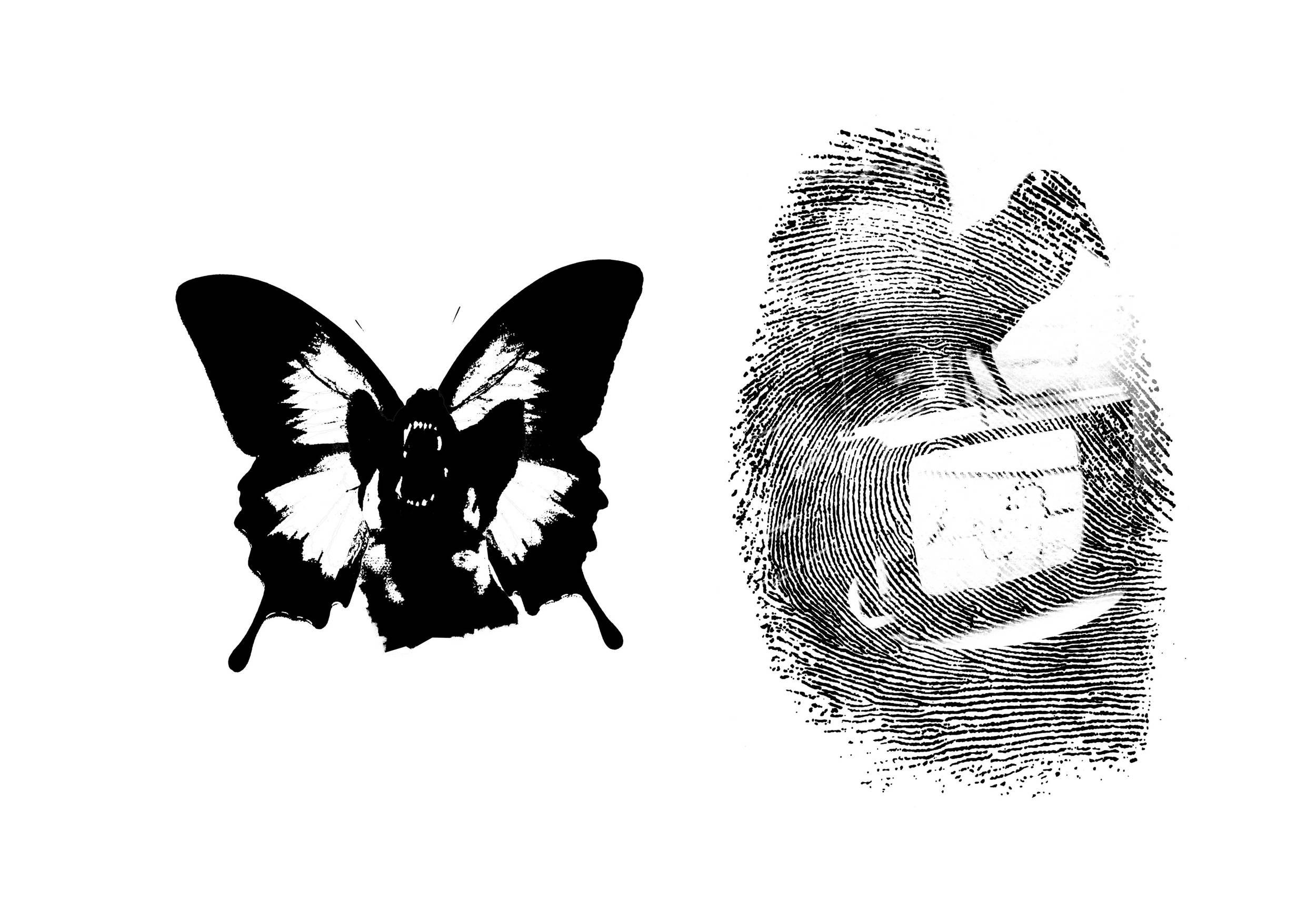 motif-2.jpg